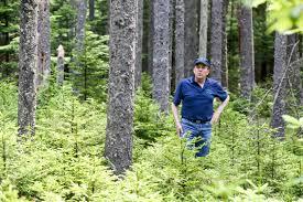woodland owner